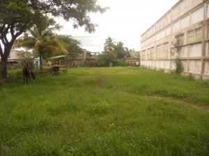 terreno-plaza-mendez.jpg